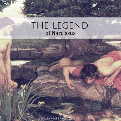 the legend of narcissus