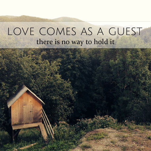love comes as a guest
