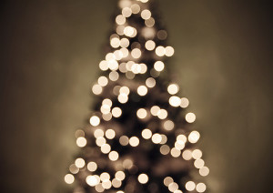 christmas lights by Shandi-lee