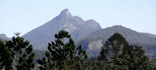 Mt.Wollumbin