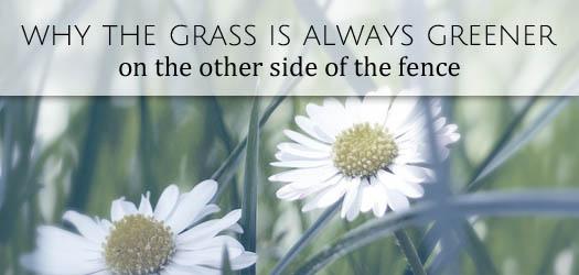 grass greener T