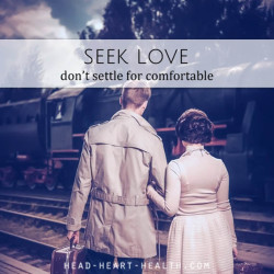 seek love